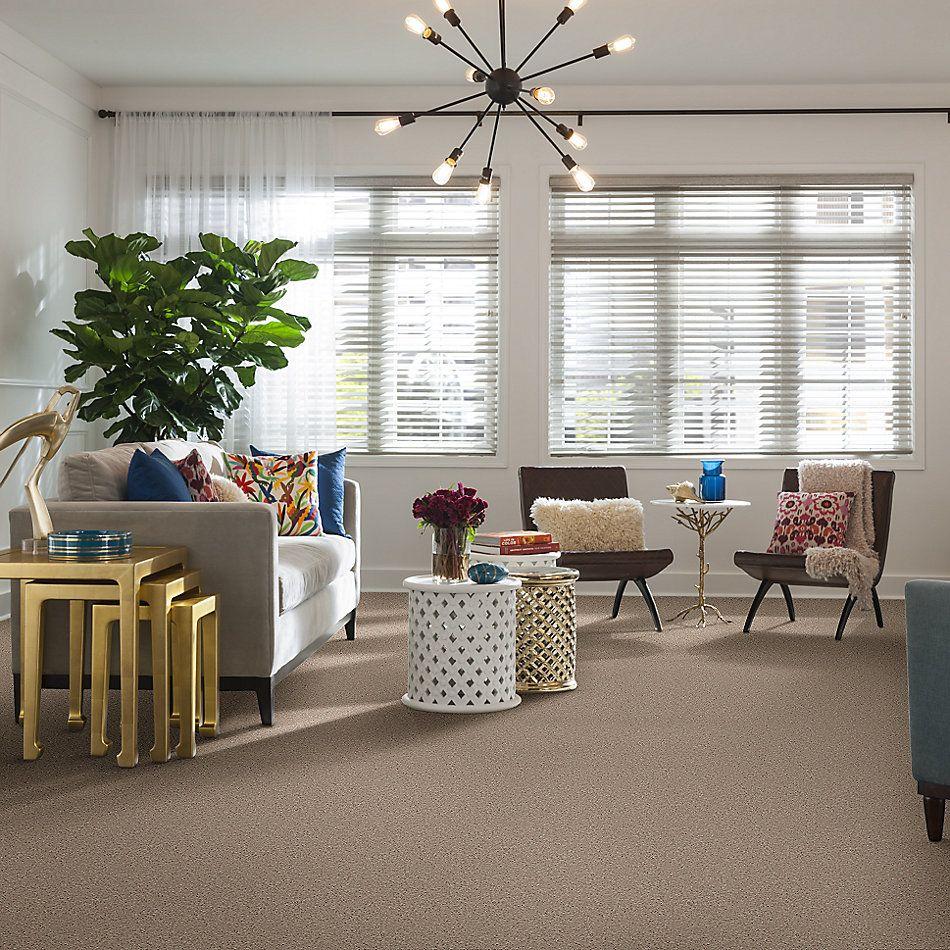 Shaw Floors Shaw On Shelf North Shore III Flax Seed 00103_SOS35