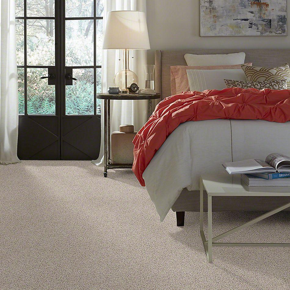 Shaw Floors Northern Parkway Quartz 00104_52V34