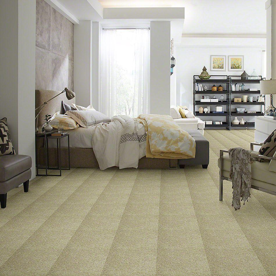Shaw Floors Full Of Life Knapsack 00104_52N09