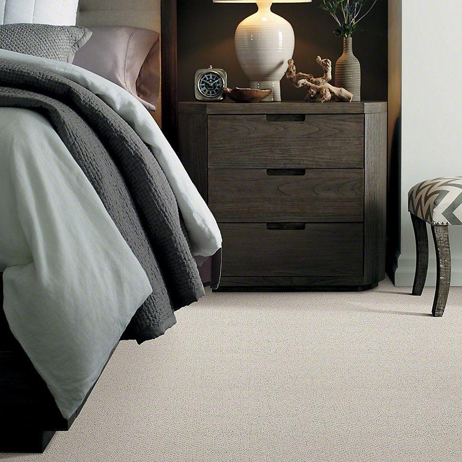 Shaw Floors Shaw Flooring Gallery Supreme Comfort Loop Polar 00104_5469G