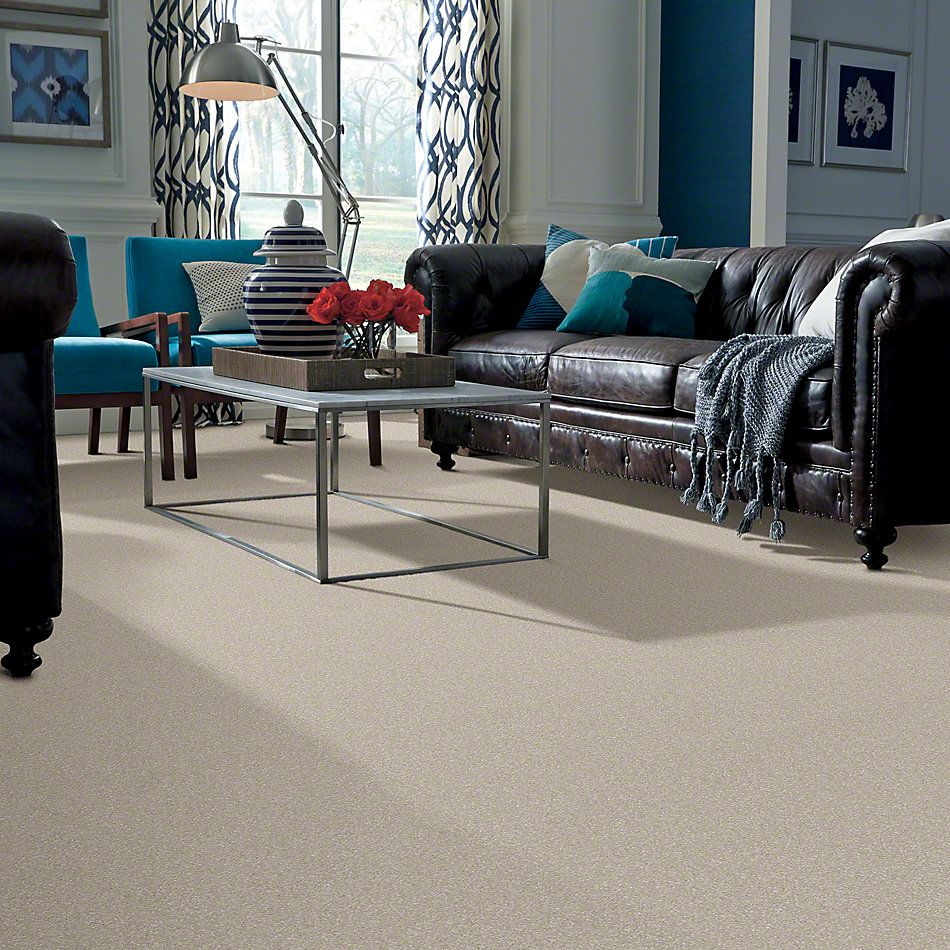 Shaw Floors Shaw Design Center Moment Of Truth Linen 00104_5C789