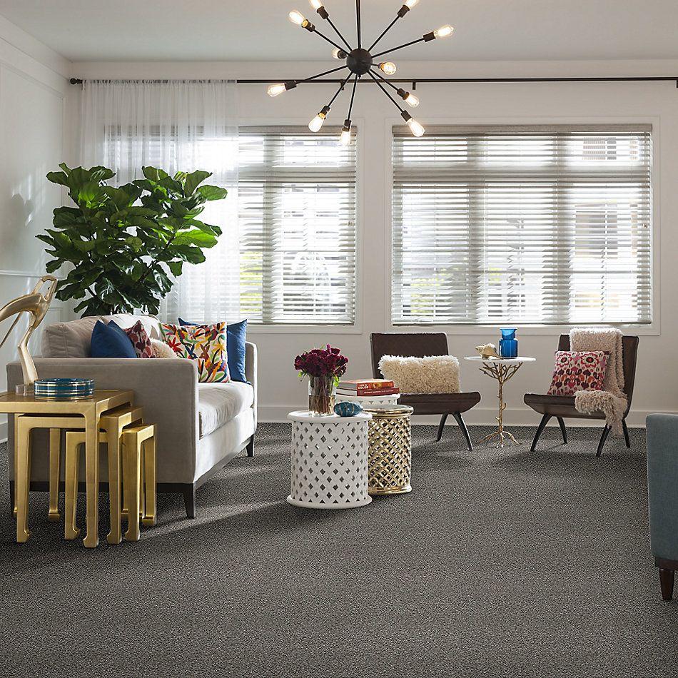 Shaw Floors Bellera Calm Serenity I Split Sediment 00104_5E270