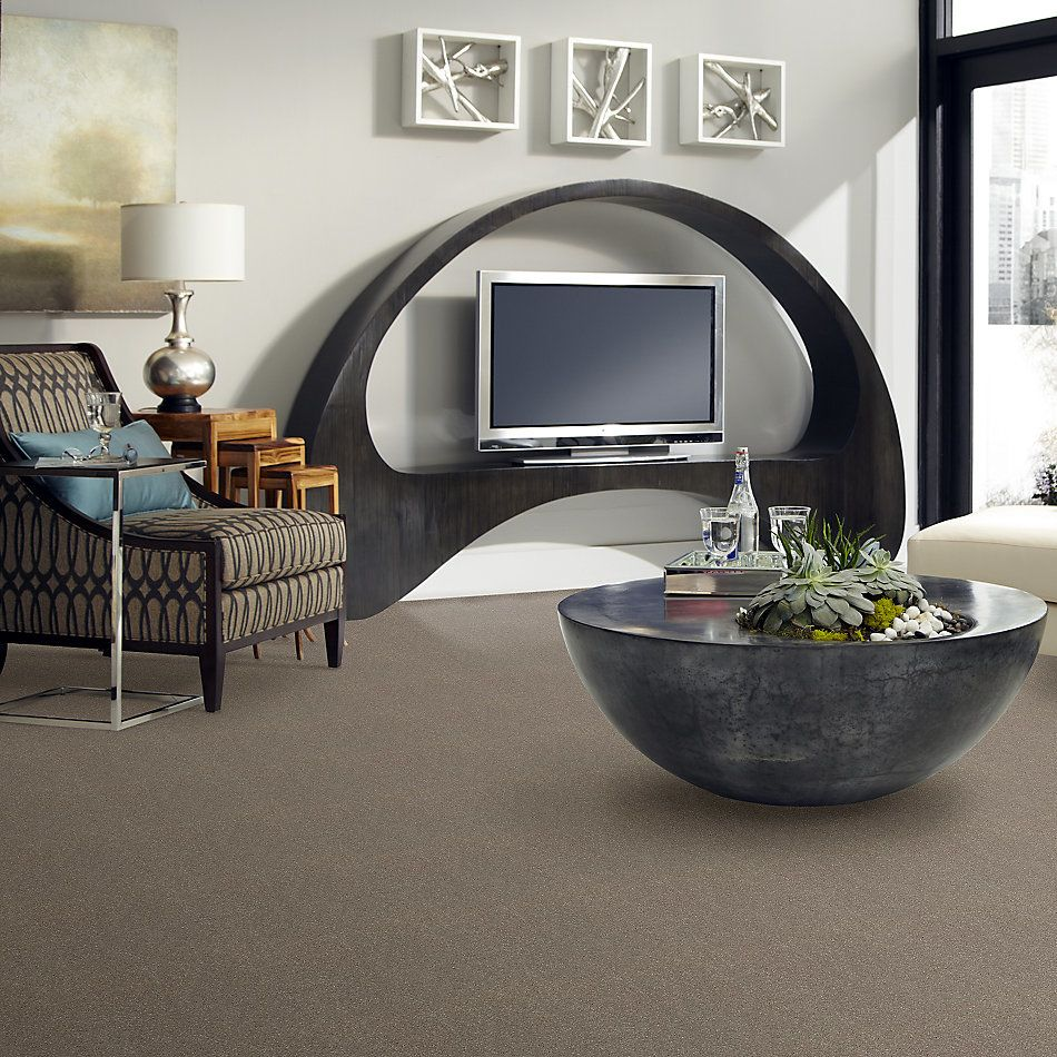 Shaw Floors Value Collections Solidify II 15 Net Natural Contour 00104_5E344