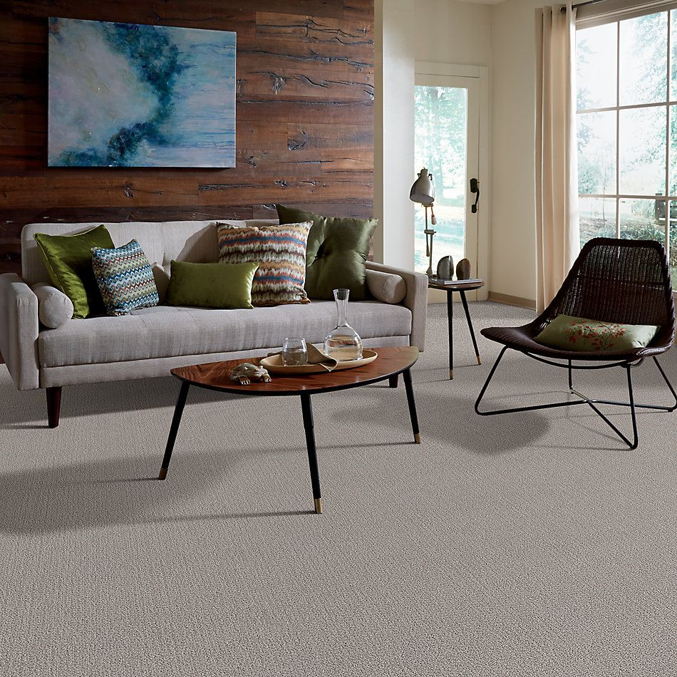 Shaw Floors Value Collections Loop De Loop Net Warm Greige 00104_5E468