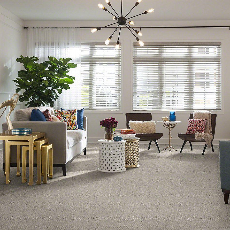 Shaw Floors Timeless Charm Loop Polar 00104_E0405