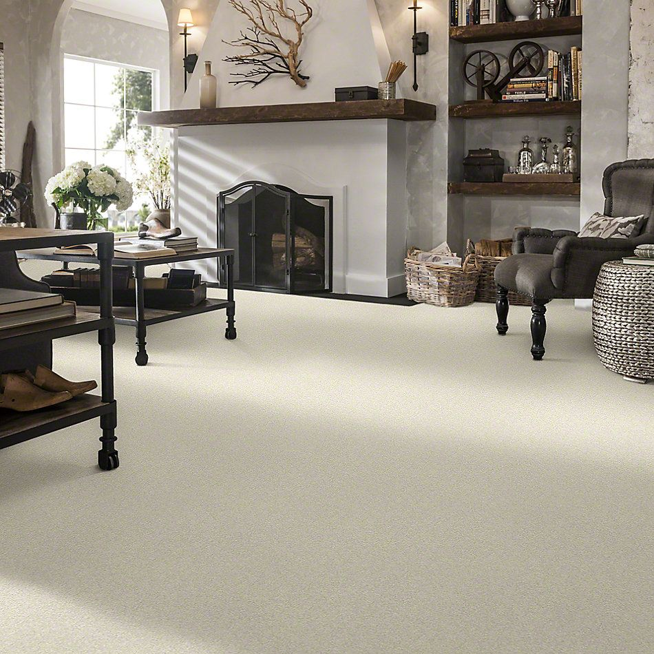 Shaw Floors Value Collections Gold Texture Net Fine China 00104_E9325