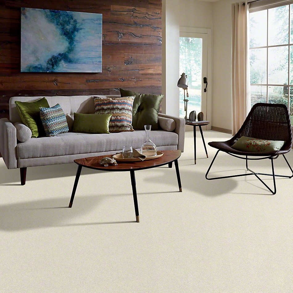 Shaw Floors Anso Colorwall Titanium Texture Fine China 00104_EA709