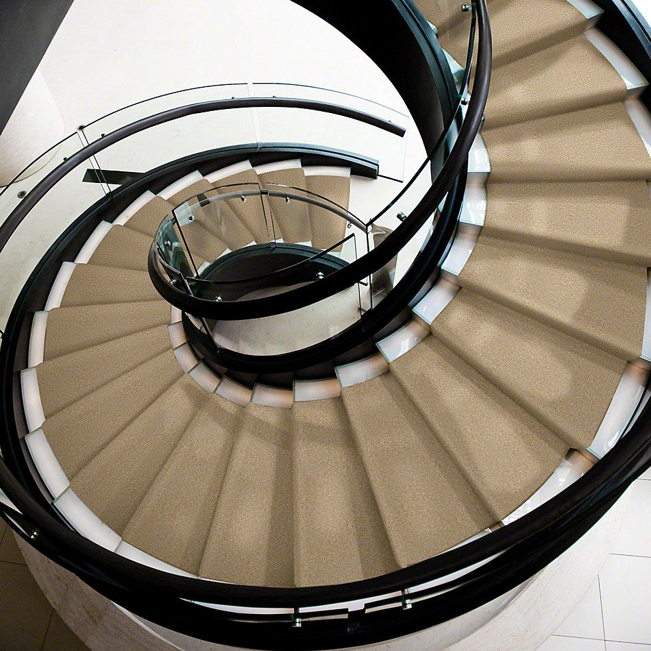 Shaw Floors Shaw Flooring Gallery Invite Possibility III Silk 00104_Q316G