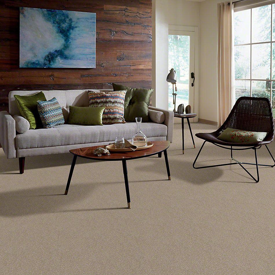 Shaw Floors Roll Special Xv436 Oatmeal 00104_XV436