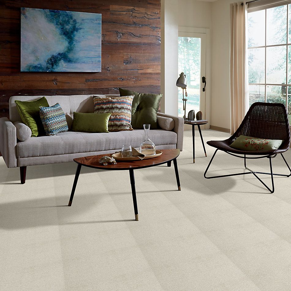 Shaw Floors Value Collections Cashmere III Lg Net Cheviot 00104_CC49B