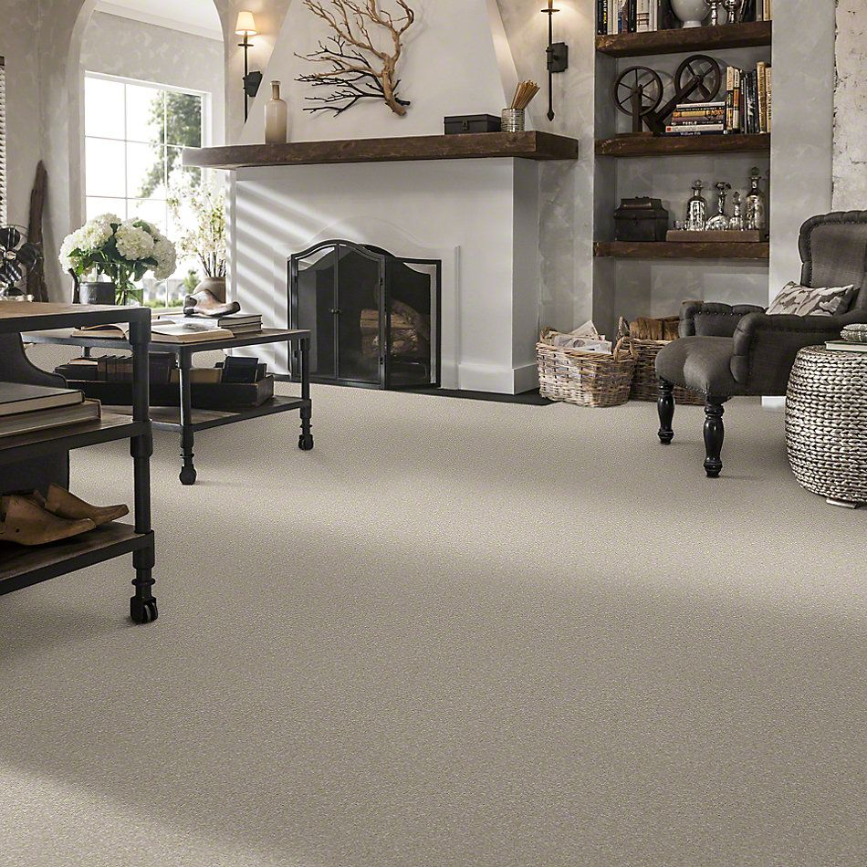 Shaw Floors Value Collections That's Right Net Linen 00104_E0925