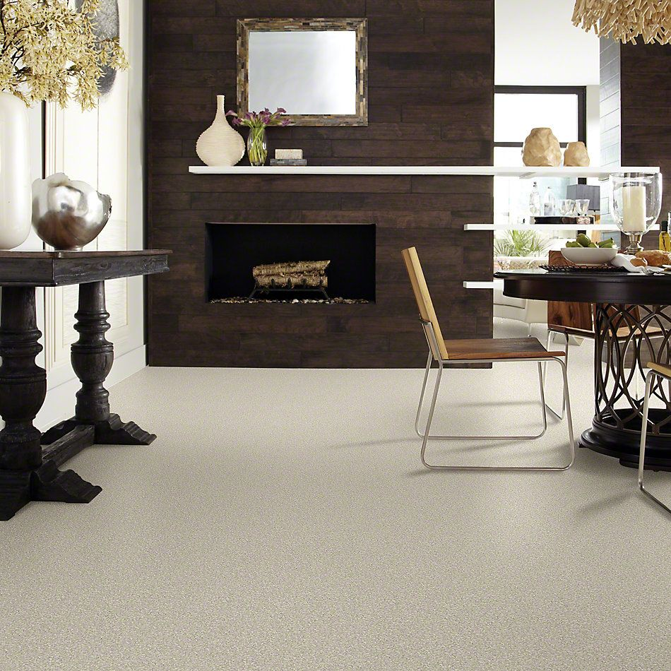 Shaw Floors Value Collections You Know It Net Linen 00104_E0927