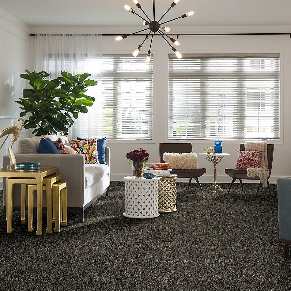 Shaw Floors Value Collections Because We Can I 15′ Net Timber Wolf 00104_E9313