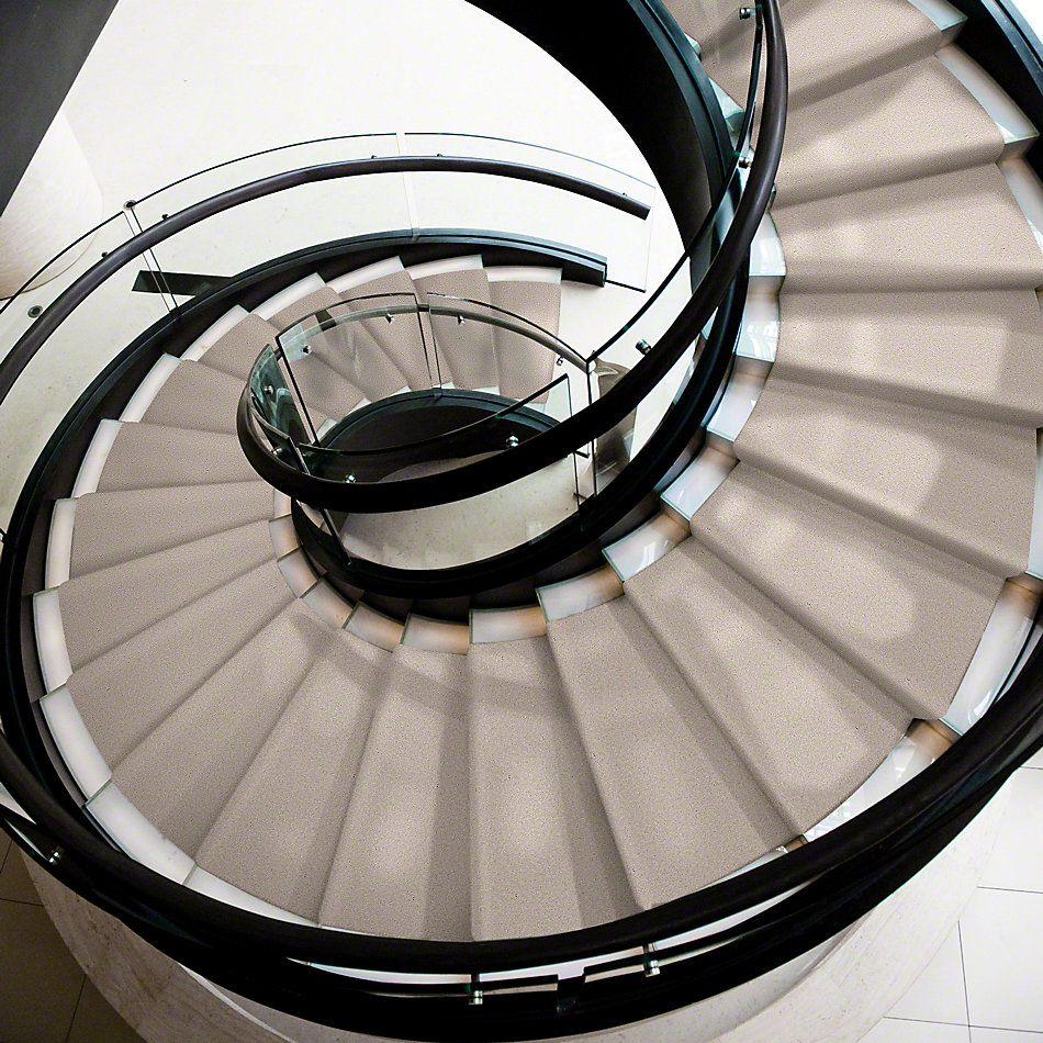 Shaw Floors Shaw Design Center Sweet Valley II 15′ Oatmeal 00104_QC423