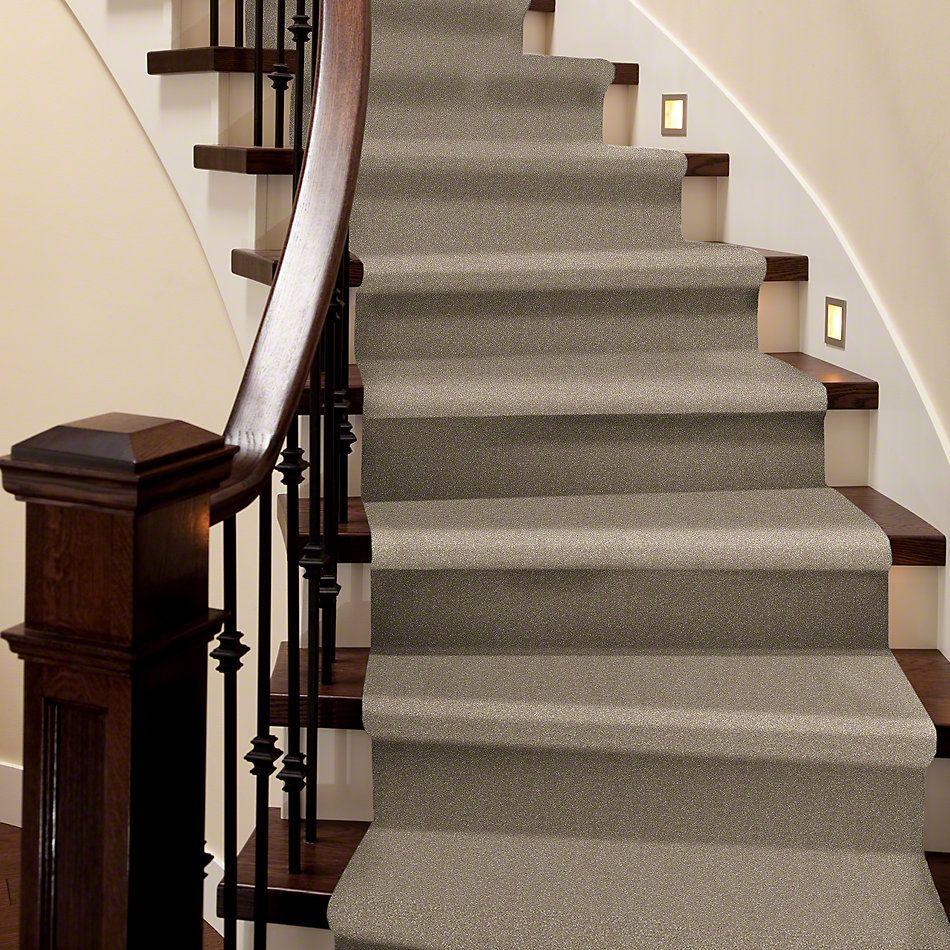 Shaw Floors Roll Special Xv410 Oatmeal 00104_XV410