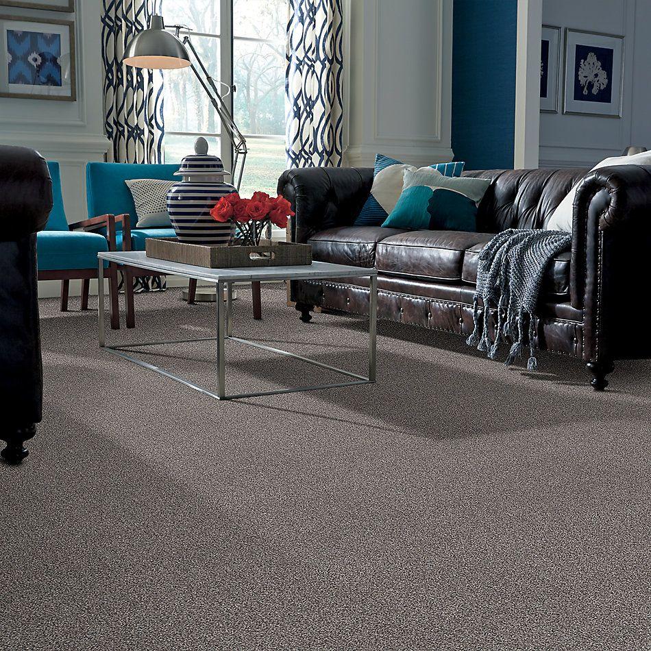 Shaw Floors Value Collections Xz147 Net Cozy Light 00104_XZ147