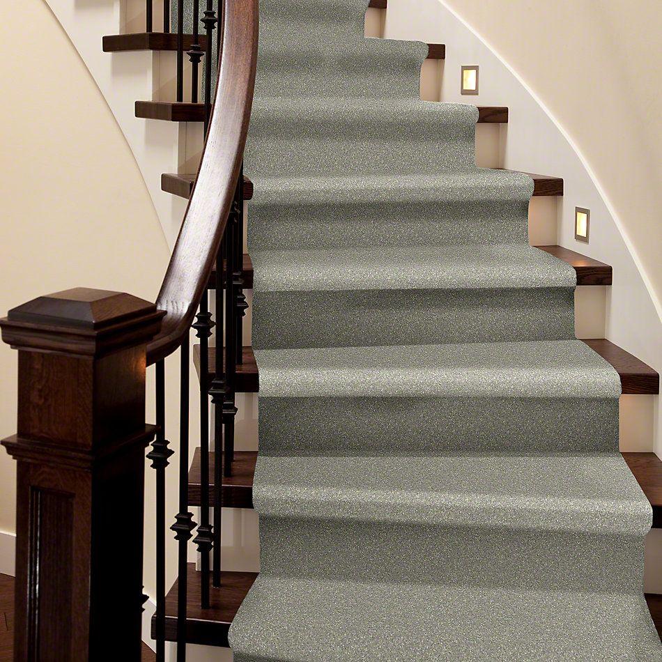 Shaw Floors Shaw Flooring Gallery Challenge Accepted II 15′ Wild Rice 00105_5528G