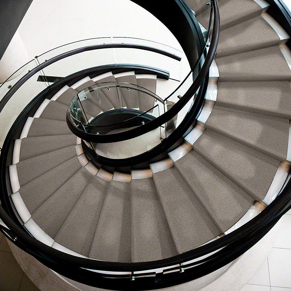Shaw Floors Shaw Design Center Moment Of Truth Mocha Cream 00105_5C789