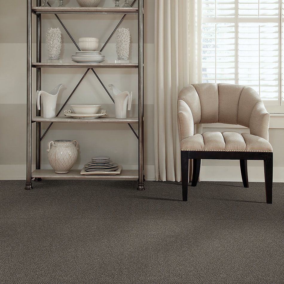 Shaw Floors Simply The Best Boundless II Net Slate Stone 00105_5E504