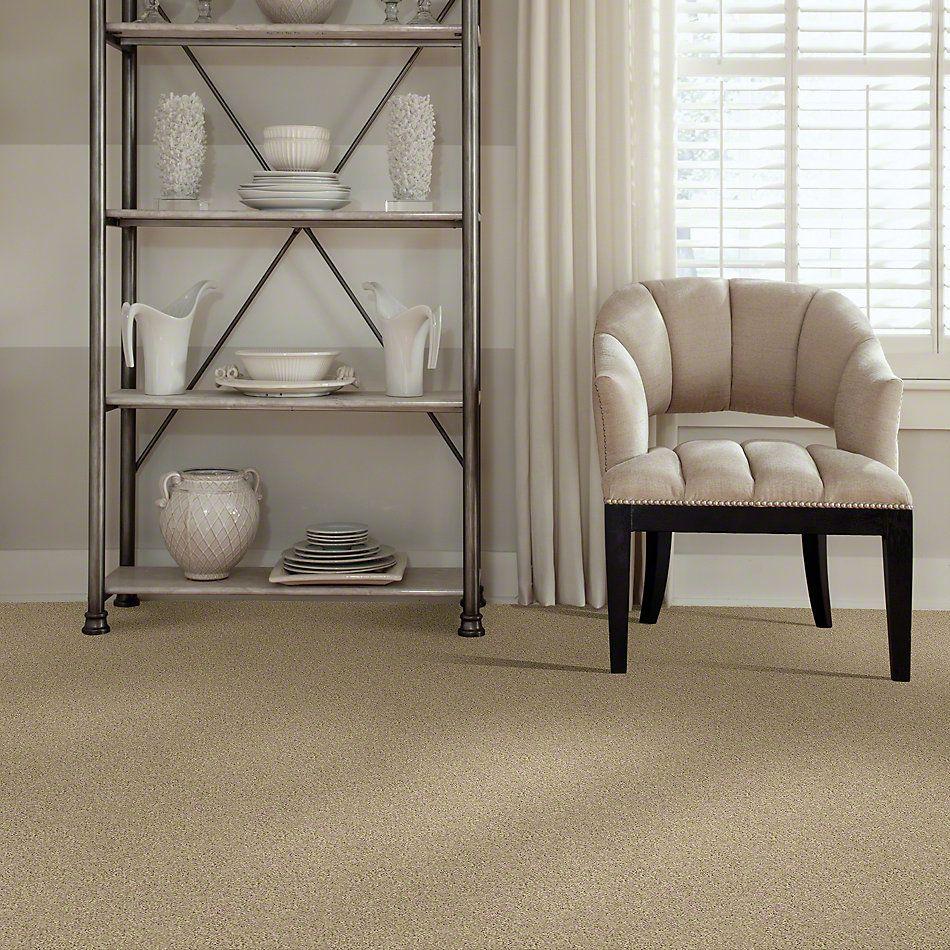 Shaw Floors SFA Loyal Beauty II Mesa 00105_EA163