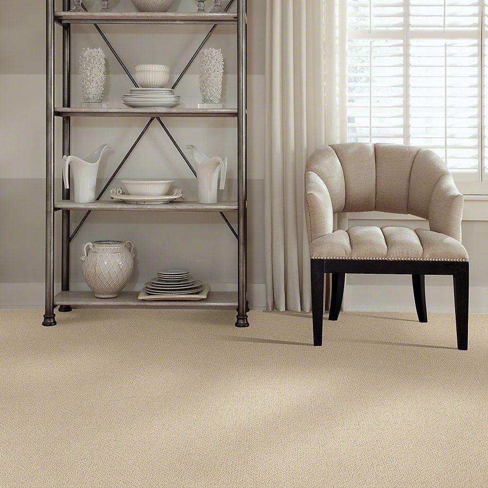 Shaw Floors SFA Sincere Beauty Loop Mesa 00105_EA184