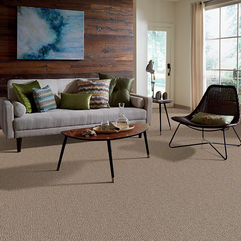 Shaw Floors Simply The Best Striking Yet Sun Washed 00105_EA687