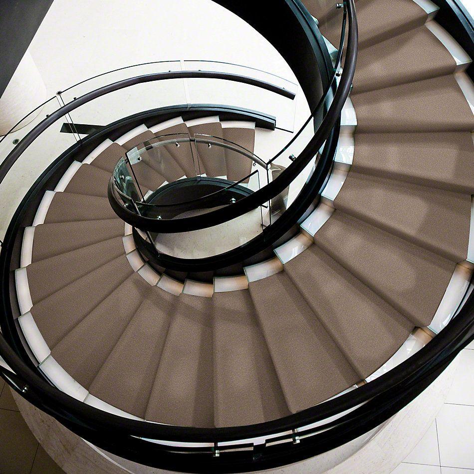 Shaw Floors Shaw Flooring Gallery Truly Modern I 12′ Soft Shadow 00105_Q263G