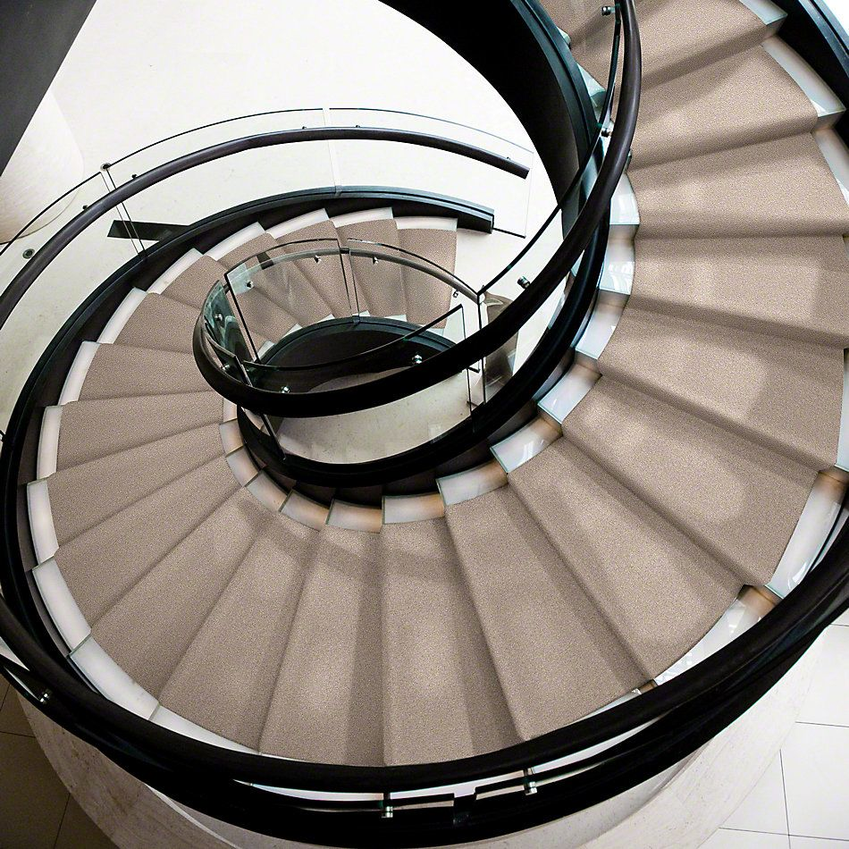 Shaw Floors Sandy Hollow Classic III 12′ Soft Shadow 00105_E0552
