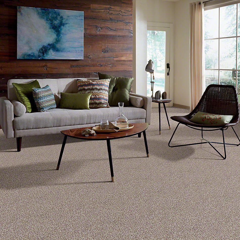 Shaw Floors Color Flair Natural Wood 00105_E0852