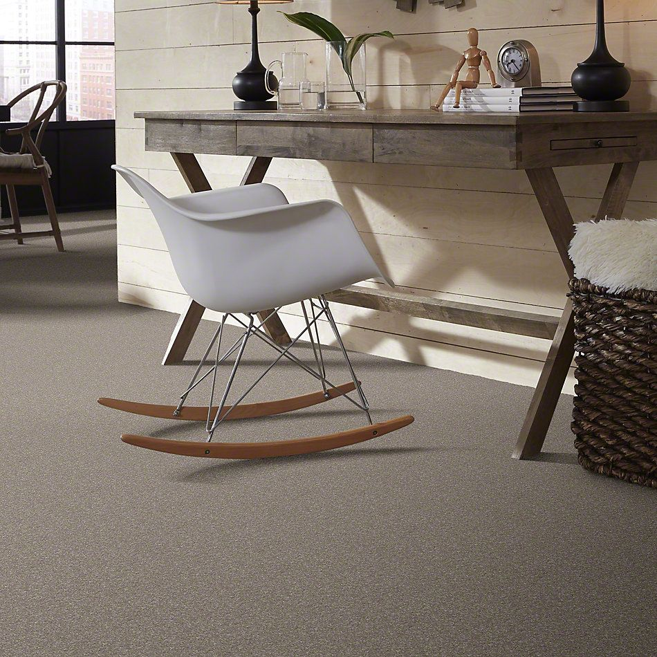 Shaw Floors Value Collections That's Right Net Mocha Cream 00105_E0925