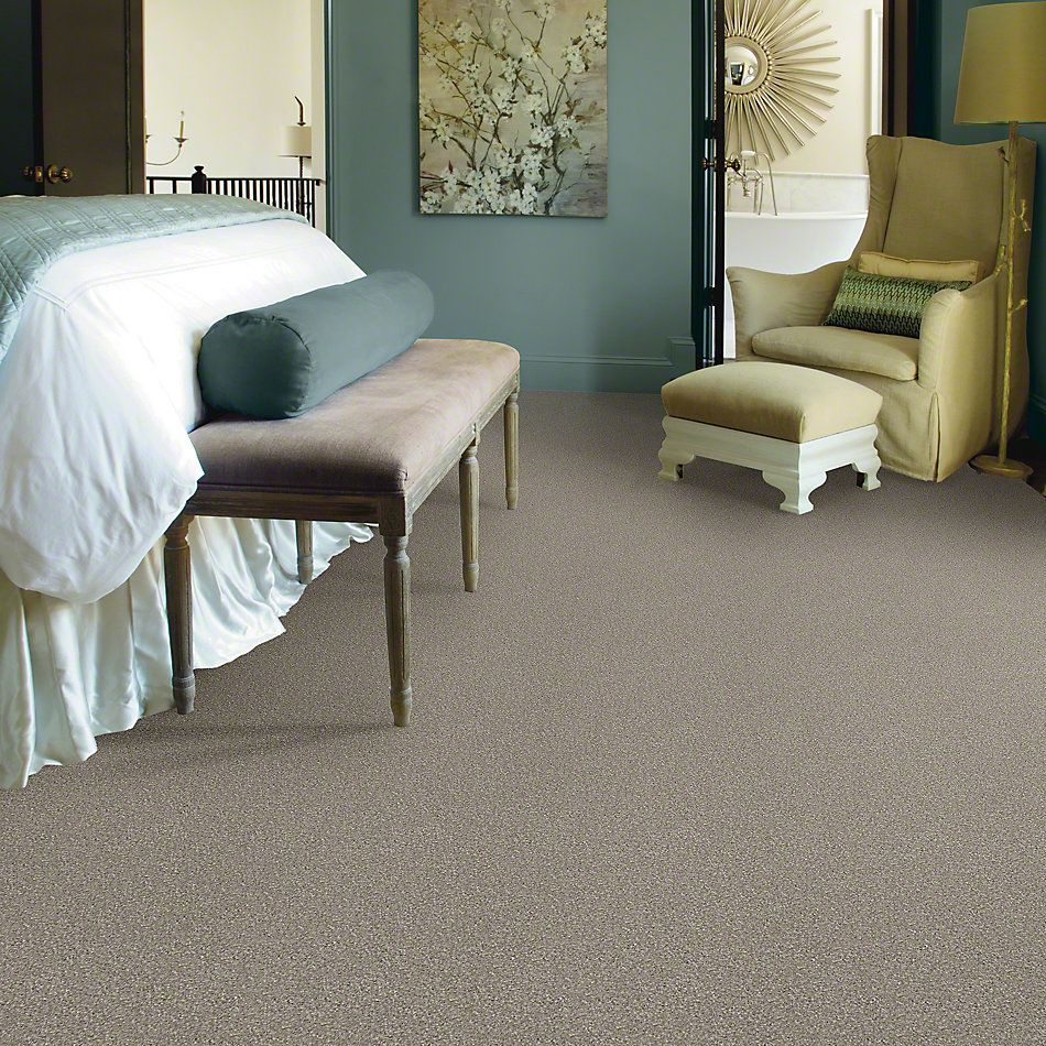 Shaw Floors Value Collections You Know It Net Mocha Cream 00105_E0927