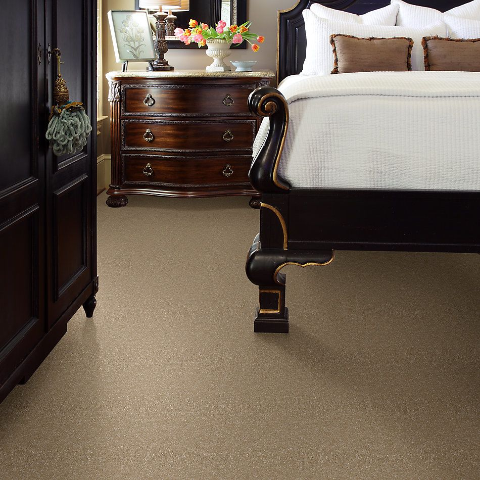Shaw Floors Value Collections Passageway 3 12 Net Sugar Cookie 00105_E9154
