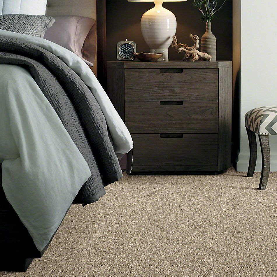 Shaw Floors Value Collections Of Course We Can II 15′ Net Sepia 00105_E9438