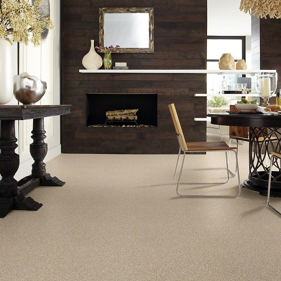 Shaw Floors Value Collections Of Course We Can III 12′ Net Sepia 00105_E9441