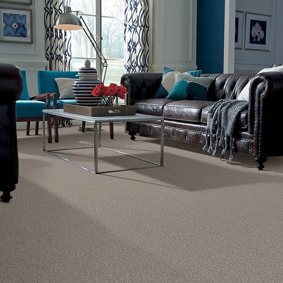 Shaw Floors Roll Special Xv813 Mocha Cream 00105_XV813
