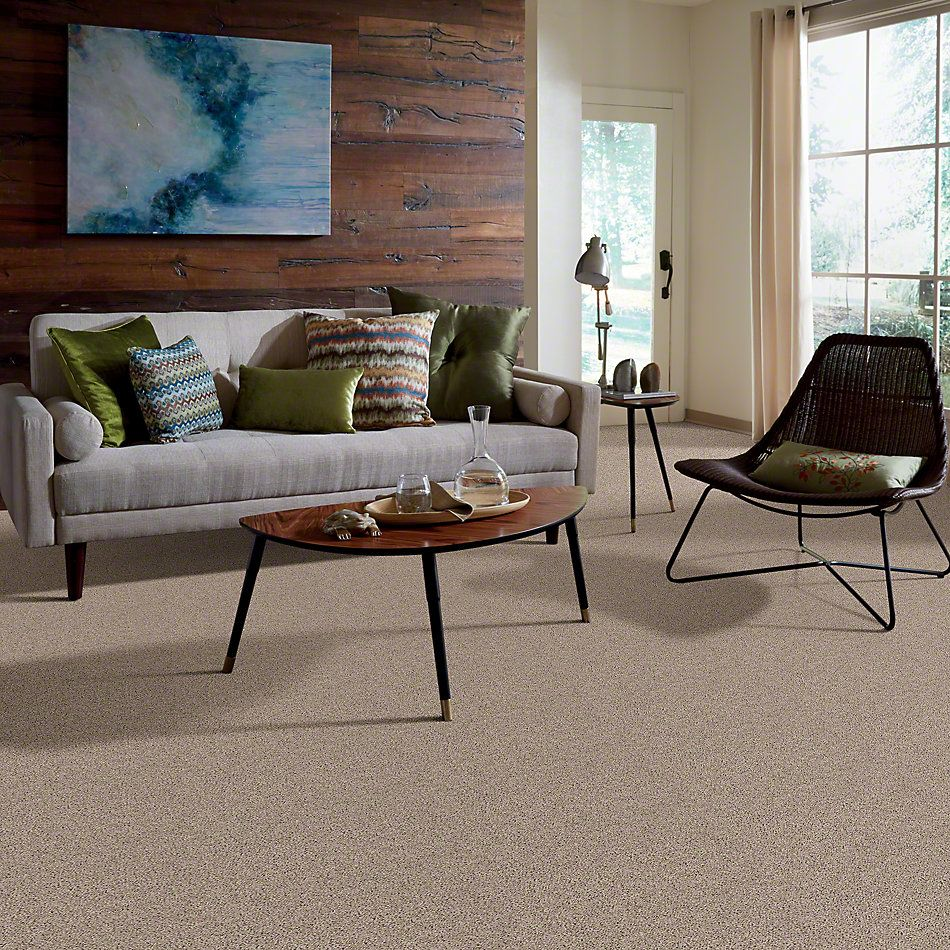 Shaw Floors Northern Parkway Field Khaki 00106_52V34