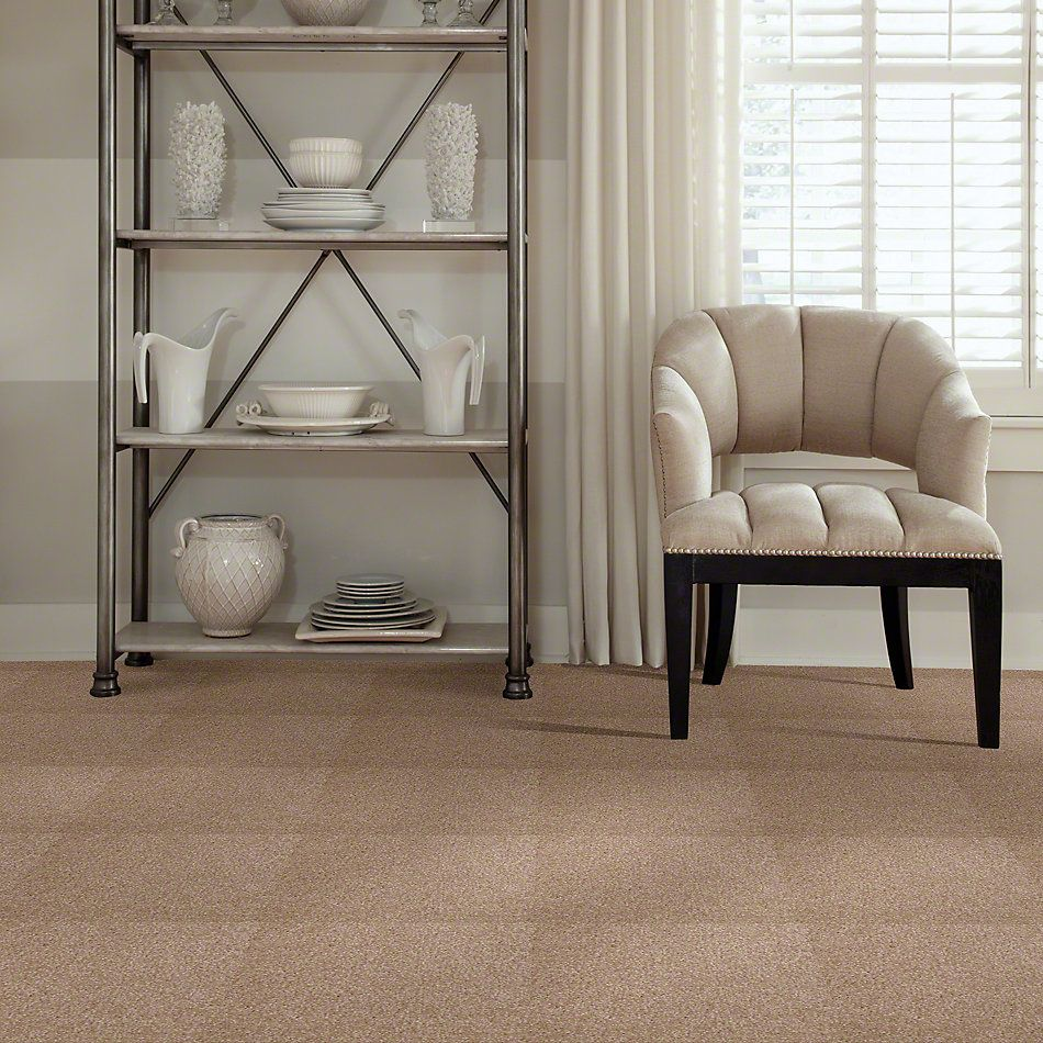 Shaw Floors Shaw Flooring Gallery Invite Possibility I 15′ Muffin 00106_Q321G