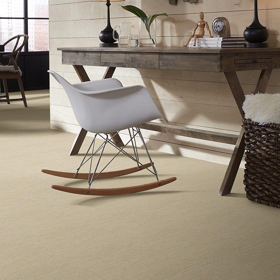 Shaw Floors Value Collections Linenweave Classic Net Santa Cruz 00106_CC62B
