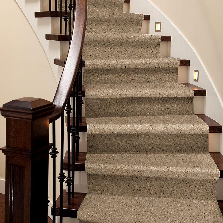 Shaw Floors Property Solutions Roadside Heavenly 00106_HFA83