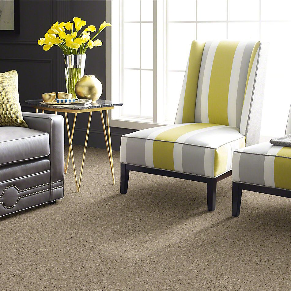 Shaw Floors Town Creek II Linen 00107_52S30