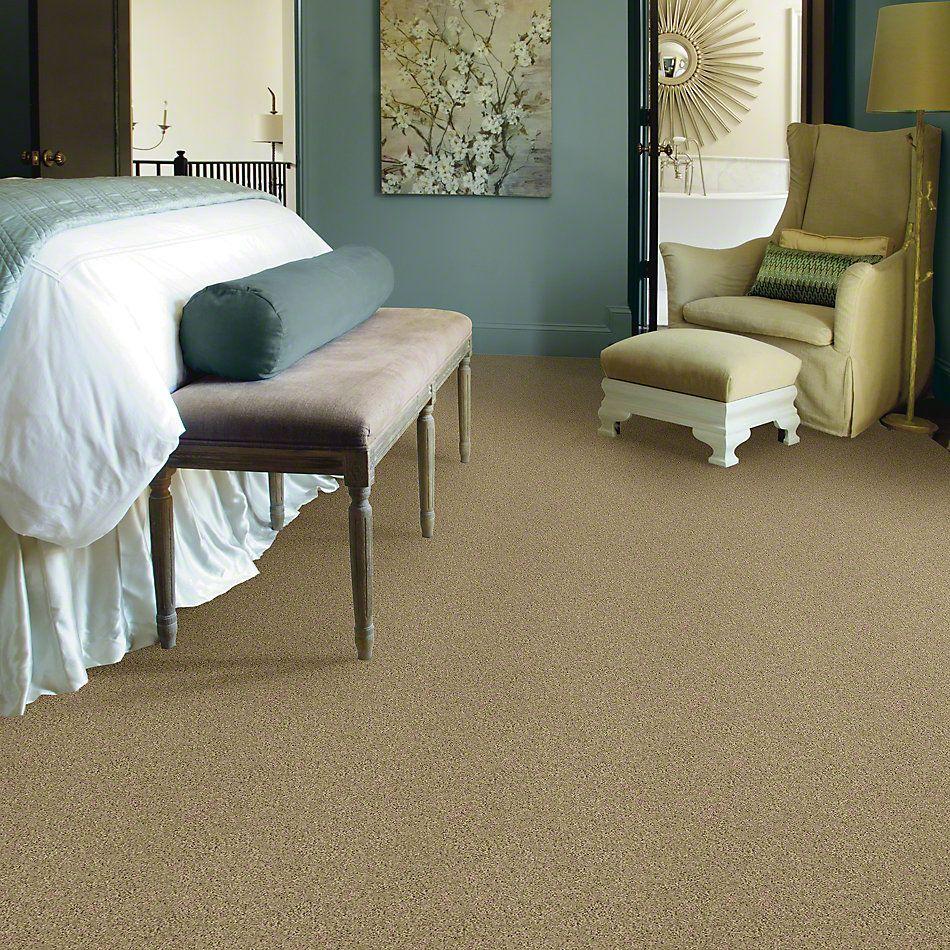Shaw Floors Shaw Flooring Gallery Grand Image II Taffeta 00107_5350G