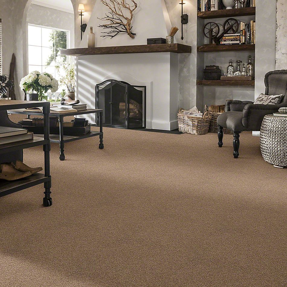 Shaw Floors Value Collections Cabana Life Solid Net Camel 00107_5E003