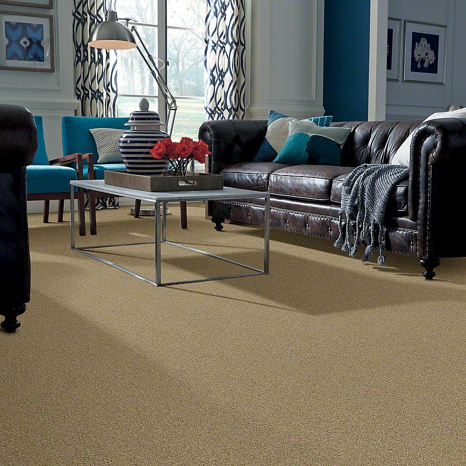 Shaw Floors Enduring Comfort I Taffeta 00107_E0341