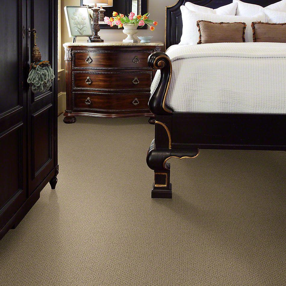 Shaw Floors Timeless Charm Loop Taffeta 00107_E0405