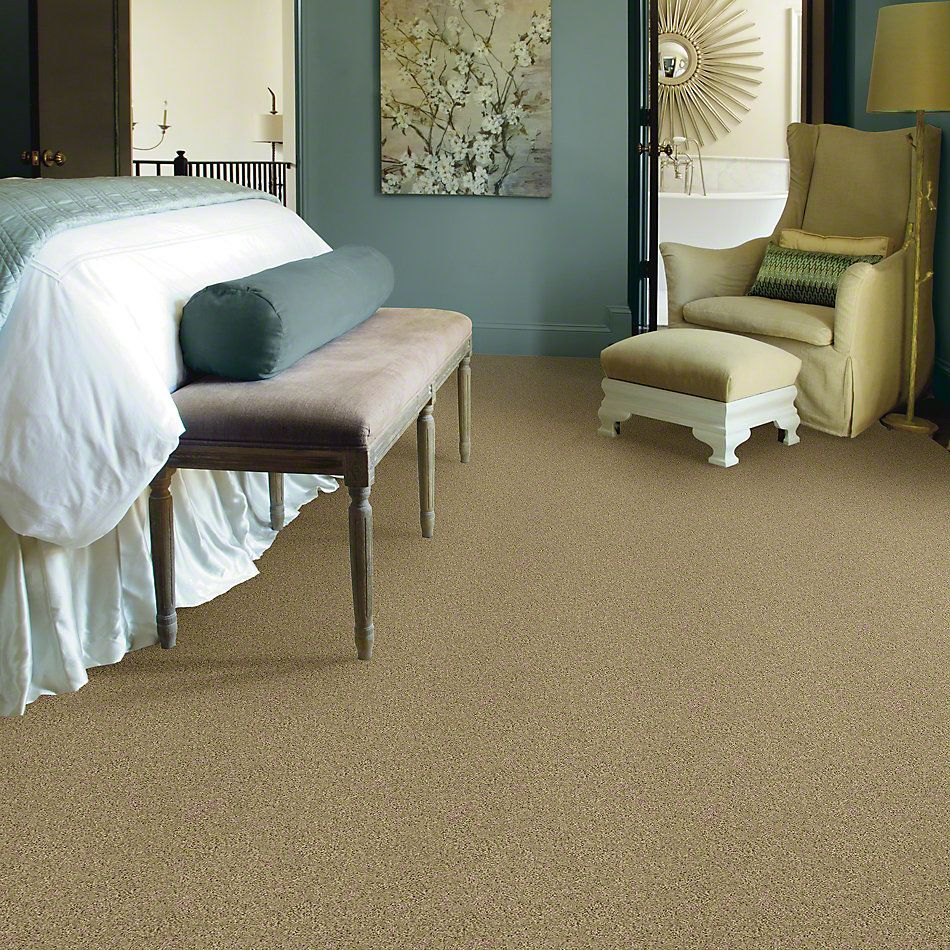 Shaw Floors SFA Loyal Beauty III Taffeta 00107_EA164