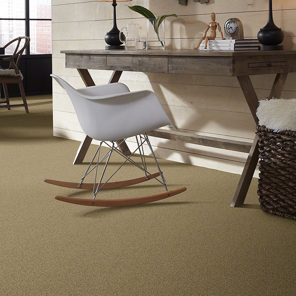 Shaw Floors SFA My Inspiration I Taffeta 00107_EA559
