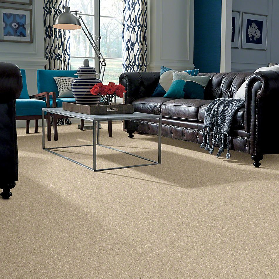 Shaw Floors Caress By Shaw Quiet Comfort Classic I Yearling 00107_CCB96