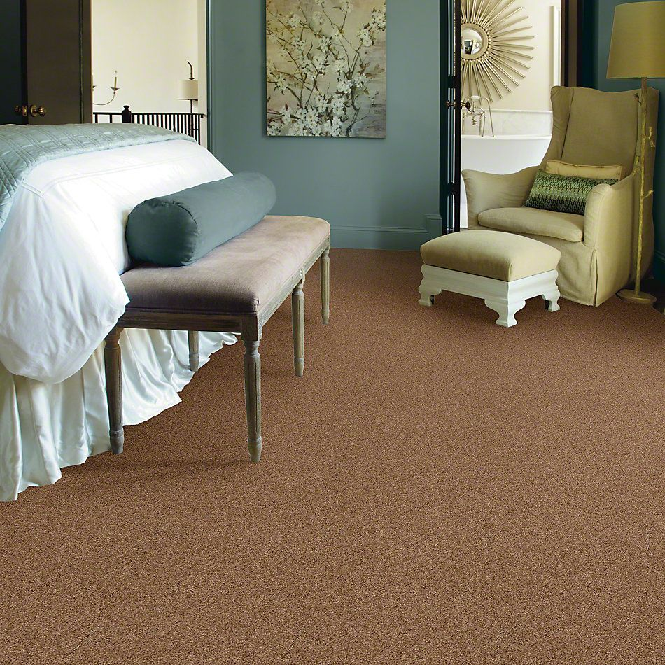 Shaw Floors Lonestar Buckwheat 00107_E0113
