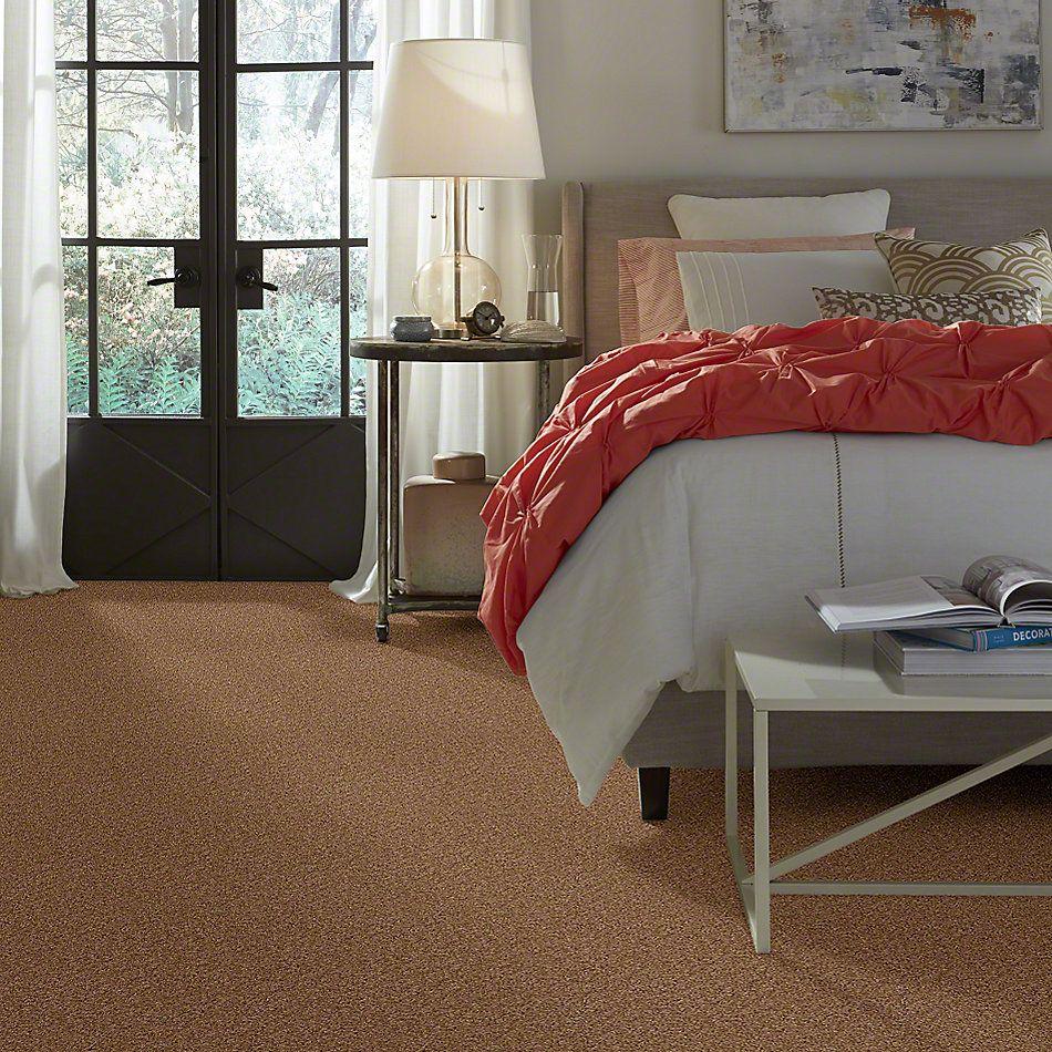 Shaw Floors Lonestar Buckwheat 00107_E0113