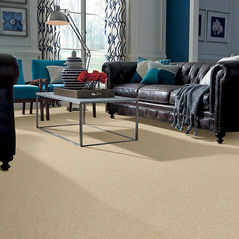 Shaw Floors Clearly Chic Bright Idea I Warm Vanilla 00107_E0504
